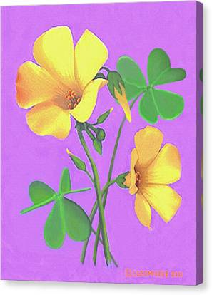 Canvas Print featuring the painting Yellow Clover Flowers by Sophia Schmierer