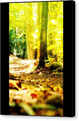 Yellow Discin Day Canvas Print