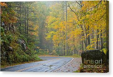 Yellow Fall Roadside Scenic Canvas Print