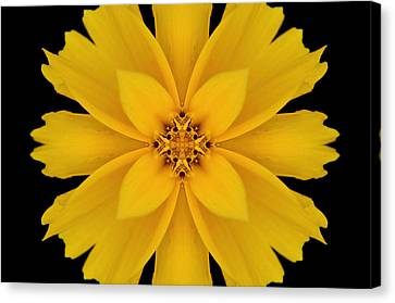 Yellow Flower Kaleidoscope Abstract Canvas Print by Don Johnson