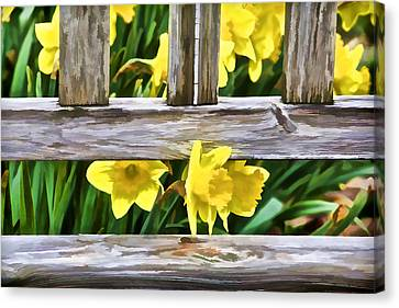 Yellow Flowers By The Bench Canvas Print by David Letts