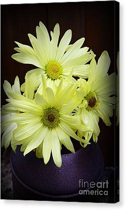 Yellow Flowers Canvas Print by Paul Ward