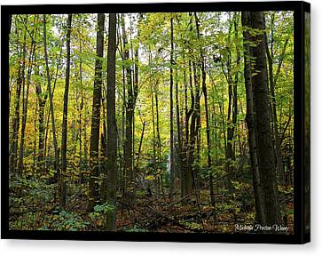 Canvas Print featuring the photograph Yellow Forrest by Michaela Preston