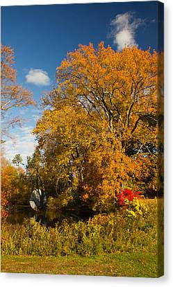 Canvas Print featuring the photograph Yellow Giant by Jose Oquendo