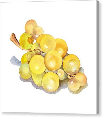 Yellow Grape Canvas Print