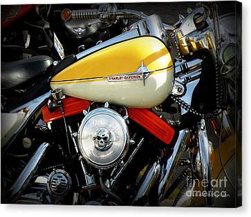 Yellow Harley Canvas Print by Lainie Wrightson