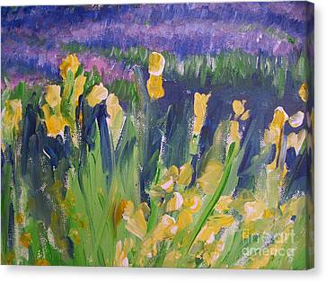 Yellow Iris Canvas Print by Eric  Schiabor