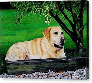 Yellow Lab Canvas Print by Karen Rhodes
