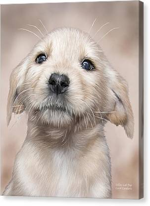 Yellow Lab Pup Canvas Print