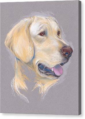 Yellow Labrador Retriever Portrait Canvas Print