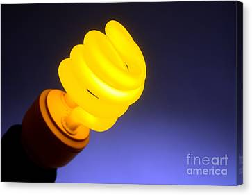 Yellow Light Canvas Print by Olivier Le Queinec