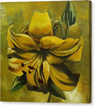 Yellow Lily Canvas Print by Alfred Ng