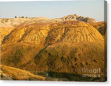 Yellow Mounds Overlook Badlands National Park Canvas Print