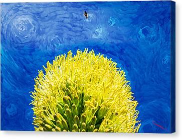 Yellow On Blue Canvas Print by SM Shahrokni