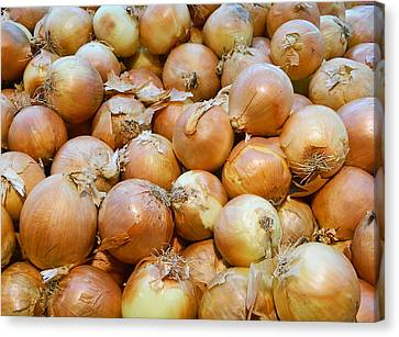 Canvas Print featuring the photograph Yellow Onions by Emmy Marie Vickers