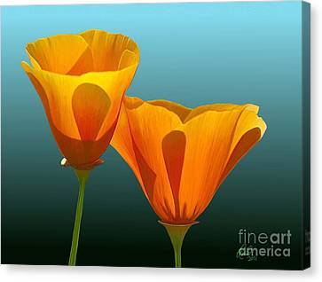 Yellow Poppies Canvas Print by Rand Herron