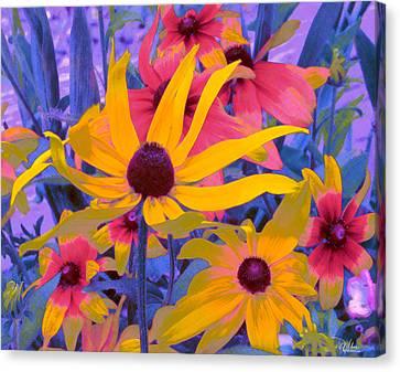 Fantasy Garden - Rudbeckia Canvas Print