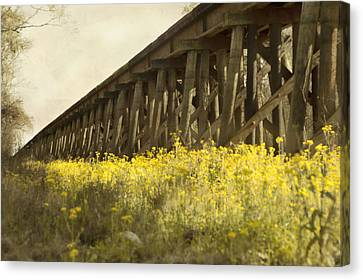 Yellow Rustic Setting Canvas Print by Alicia Morales