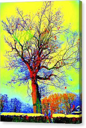 Canvas Print featuring the photograph Yellow Sky by Jodie Marie Anne Richardson Traugott          aka jm-ART
