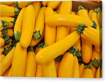 Canvas Print featuring the photograph Yellow Summer Squash by Diane Lent