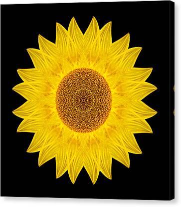 Yellow Sunflower Ix Flower Mandala Canvas Print by David J Bookbinder