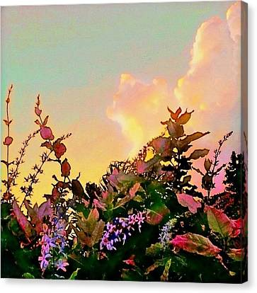 Yellow Sunrise With Flowers - Square Canvas Print by Lyn Voytershark