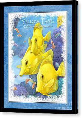 Yellow Tang Canvas Print