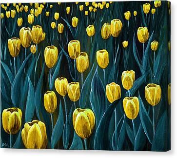 Yellow Tulip Field Canvas Print by Anastasiya Malakhova