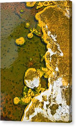 Yellowstone Abstract Canvas Print by Jamie Pham