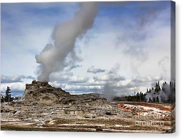Yellowstone Castle Geyser Canvas Print by Leslie Kirk
