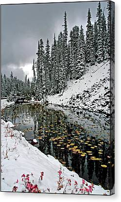 Yellowstone Early Snow Canvas Print