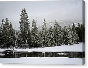 Yellowstone Gibbon Meadows Spring Snow And Reflection Canvas Print by Bruce Gourley