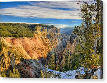 Yellowstone Grand Canyon East View Canvas Print by Greg Norrell