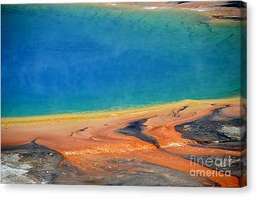 Yellowstone Grand Prismatic Colors Canvas Print by Debra Thompson