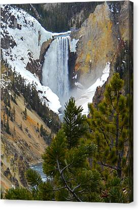 Canvas Print featuring the photograph Yellowstone Lower Falls In Spring by Michele Myers