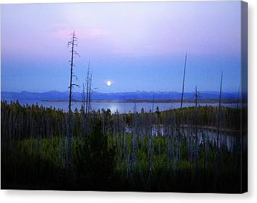 Canvas Print featuring the photograph Yellowstone Moon by Ann Lauwers