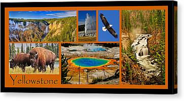 Yellowstone National Park Canvas Print by Greg Norrell