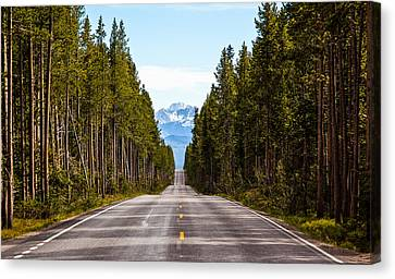 Yellowstone Open Road Canvas Print by Adam Pender