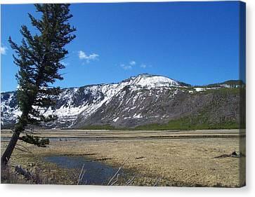 Yellowstone Park Beauty 1 Canvas Print