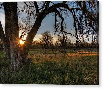 Yellowstone River Plains Canvas Print