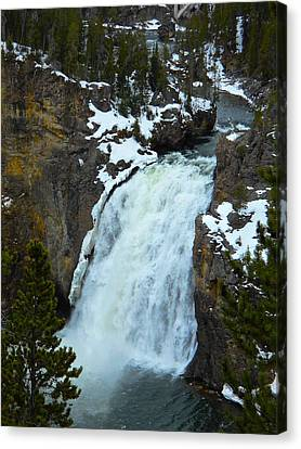 Canvas Print featuring the photograph Yellowstone Upper Falls In Spring by Michele Myers