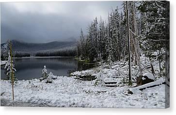 Yellowstone Winter Canvas Print by Diane Mitchell