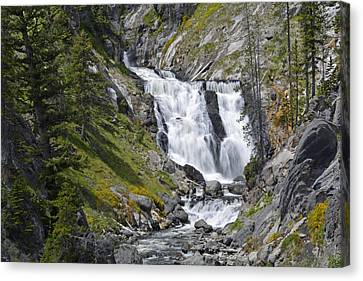 Yellowstone's Mystic Falls With Spring Flowers Canvas Print by Bruce Gourley