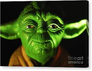 Yoda Canvas Print by Micah May