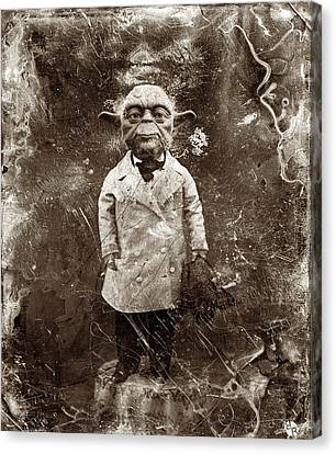 Yoda Star Wars Antique Photo Canvas Print by Tony Rubino
