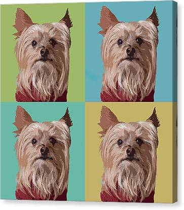 Yorkie Times Four Canvas Print by Susan Stone