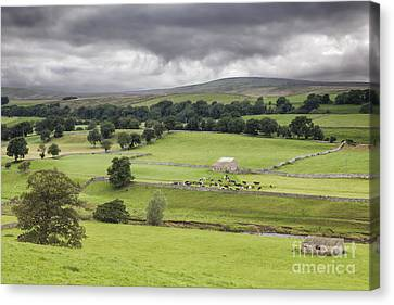 Yorkshire Dales Canvas Print by Colin and Linda McKie