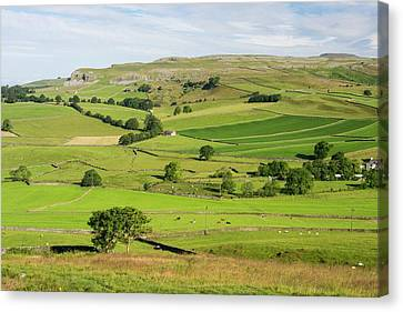 Farm System Canvas Print - Yorkshire Dales Scenery by Ashley Cooper