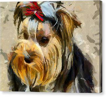 Canvas Print featuring the painting Yorkshire Terrier by Georgi Dimitrov