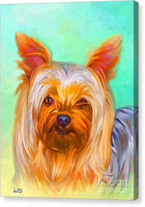 Yorkshire Terrier Painting Canvas Print by Iain McDonald